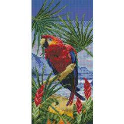 Keresztszemes készlet, Ara papagáj 27x50 cm