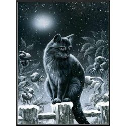Festés számok után Cica téli holdfényben 40x50 cm