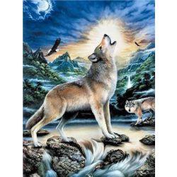 Festés számok után Farkasok éjszakája 40x50 cm