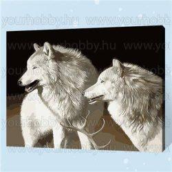 Festés számok után, Fehér farkasok 40x50 cm