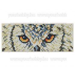 Collection D'Art Gyémántszemes kirakó mágnes készlet Bagoly szemek