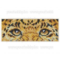 Collection D'Art Gyémántszemes kirakó mágnes készlet Leopárd szemek
