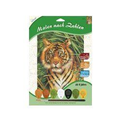 Mammut festés számok után, Tigris 22x30 cm