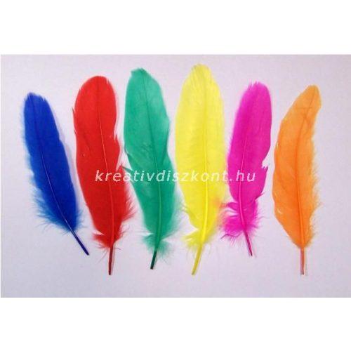 Madártoll vegyes színekben