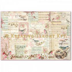 Stamperia Dekupázs rizspapír 48x33 édes karácsonyi jegyzetek és verebek DFS383