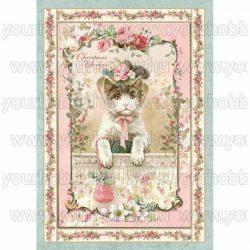 Stamperia Dekupázs rizspapír, Pink karácsonyi cica - DFSA4312