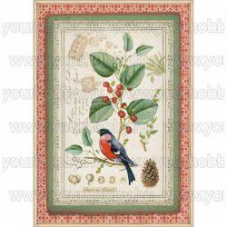 Stamperia Dekupázs rizspapír A4 Kismadár fagyalágon DFSA4326