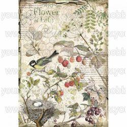 Stamperia Dekupázs rizspapír A4 Erdei virágok és gyümölcsök DFSA4459