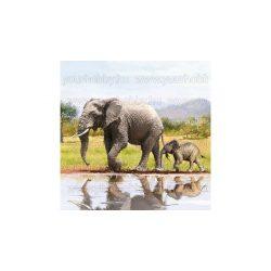 Szalvéták, Állatok, Elefántok