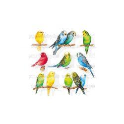Szalvéták, Állatok,  Hullámos papagájok