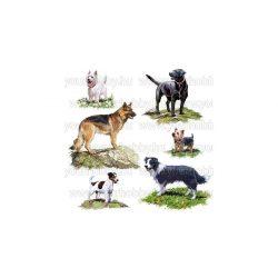 Szalvéták, Állatok, Kutyusok