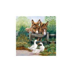 Szalvéták Barátkozó állatok
