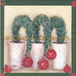 Szalvéta , Karácsonyi , Karácsonyi növény dísszel