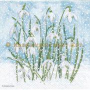 Szalvéta, Karácsonyi , Hóvirág