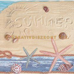 Szalvéta , Tengerpartok és kagylók , Tengerpart