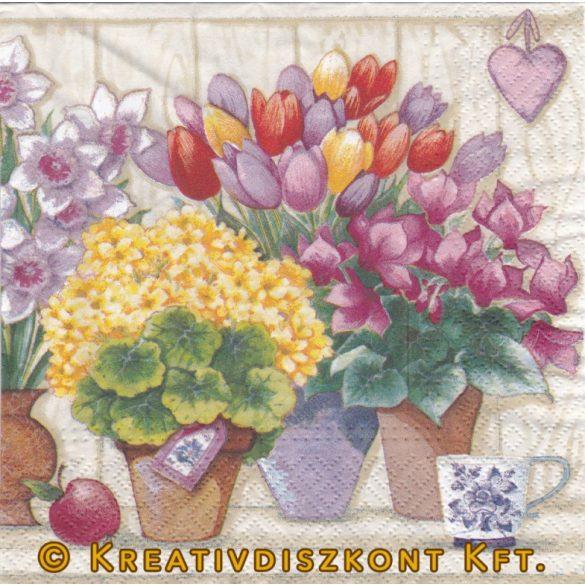 Szalvéta Tavaszi cserepes virágok