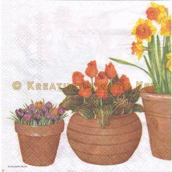 Szalvéta Cserepes virágok