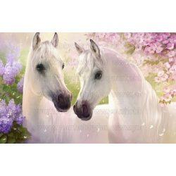 Gyémántszemes kirakó, két fehér ló, 60 x 40 cm