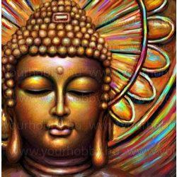 Gyémántszemes kirakó, Buddha 50x50 cm