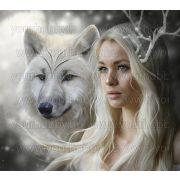 Gyémántszemes kirakó, Fehér farkas és hideg szépség 40x40 cm