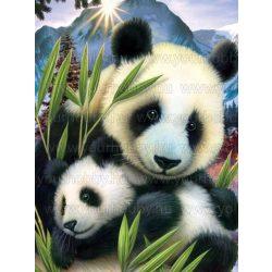 Gyémántszemes kirakó, Panda a kölykével 50x65 cm
