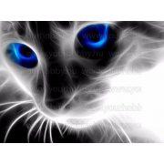 Gyémántszemes kirakó, Macska kék szemekkel 46x36cm