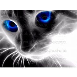 Gyémántszemes kirakó, Macska kék szemekkel 46x36 cm