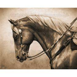 Gyémántszemes kirakó, Kantáros ló 60x40 cm