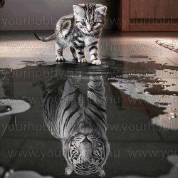 Gyémántszemes kirakó, cicából tigris 50 x 50 cm