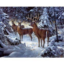 Gyémántszemes kirakó, Szarvasok a téli erdőben 50x40 cm