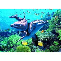 Gyémántszemes kirakó, Két delfin sárga halakkal 50x37 cm