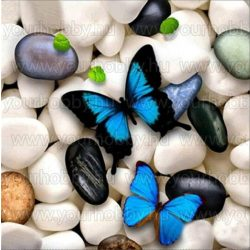 Gyémántszemes kirakó Kék pillangók 30x30 cm