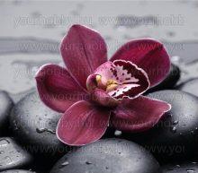 Gyémántszemes kirakó orchidea 50 x 50 cm