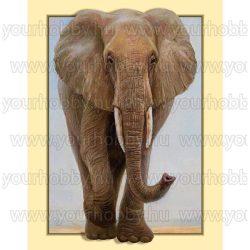 Gyémántszemes kirakó, Elefánt keretben 35x45 cm