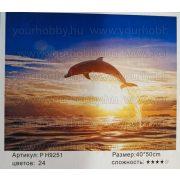 Festés számok után Delfin naplementében P H9251 40x50 cm
