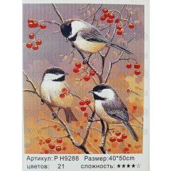 Festés számok után Madarak P H9288 40x50 cm