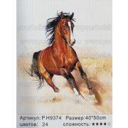 Festés számok után Vágtázó barna ló P H9374 50x40 cm