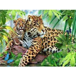 Festés számok után Leopárdok 40x50 cm