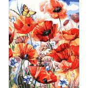 Festés számok után Pipacsok pillangóval 40x50 cm