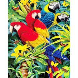 Gyémántszemes kirakó, Színes papagájok 45x55 cm