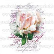 Vasalható Textil Transzfer Rózsaszál A4