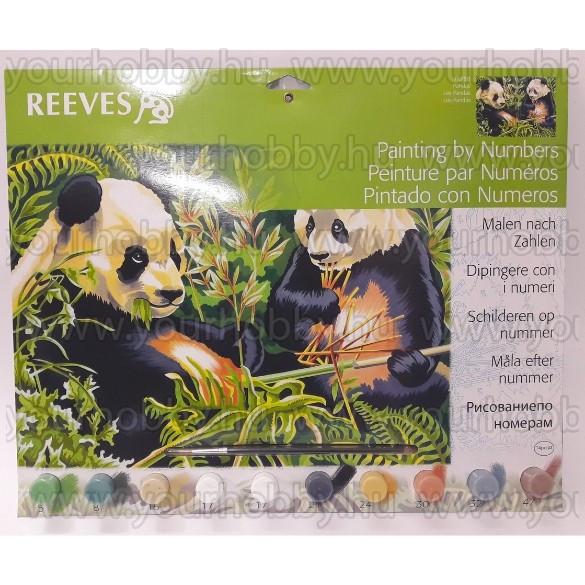 Reeves számozott kifestő - Pandák 30x40 cm