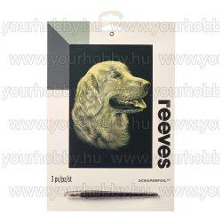 Reeves arany képkarcoló készlet - Retvier 20x25,5 cm