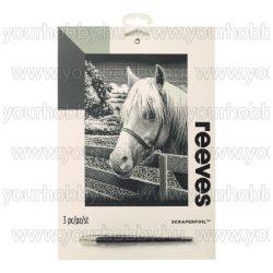 Reeves ezüst képkarcoló készlet - Ló  20X25,5 cm