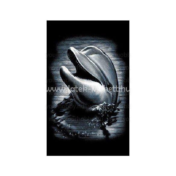 Reeves ezüst képkarcoló készlet - Delfin 11X18 cm