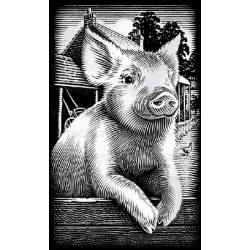 Reeves ezüst képkarcoló készlet - Röfi 11x18 cm