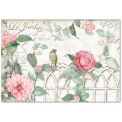 Stamperia dekupázs rizspapír 48x33 cm Kapu rózsával és madárkákkal DFS367