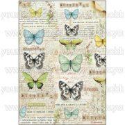 Stamperia Rizspapír A4 Lepkék és írás DFSA4178