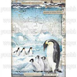 Stamperia Dekupázs rizspapír A4 Pingvinek DFSA4479