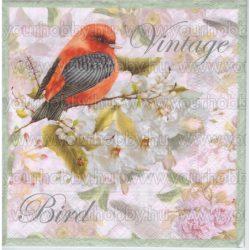 Szalvéta Vintage madár